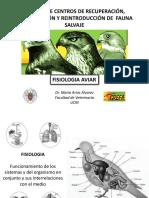 489-2016-12-15-Fisio.Aves_alumnos_luis_2016