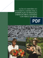 Diversificação ao Tabaco.pdf