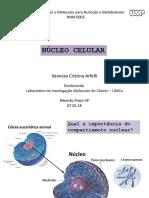 nucleo cleular