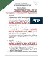 Termino Referencia Perfil Agua Potable y Alcantarillado Mollebamba 2019