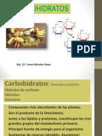 s 5 Carbohidratos