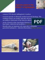 2010(Chapter19 Final) Epilepsies 2