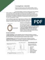 Cromatografía Gas