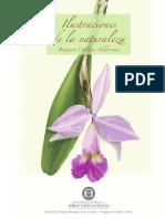 PDF-ilustraciones de La Naturaleza- Pag.02-15
