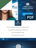 P&G CEO Challenge Description