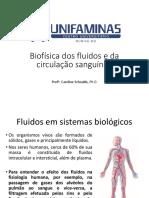 Biofísica dos fluidos e circulação.pdf