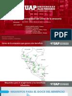 CONTABILIDAD-DE-SECTOR-AMAZONIA.pptx