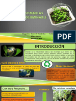 Proyecto Presentacion Final (1)