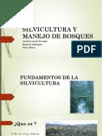 Fundamentos de La Silvicultura