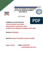 Preguntas TERMINADAS.docx