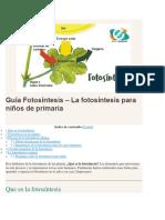 Guía Fotosíntesis