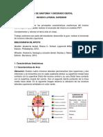 Guia Anatomia y Encerado Dental Incisivo Lateral Sup (1)