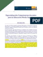Especializacion Competencias Docentes