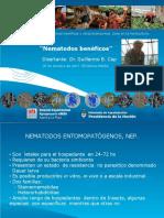 Inta Seminario Microorganismos Nematodos Beneficos-guillermo Cap