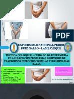 Transtornos de Infeccion de Vias Urinarias Bajas. Final