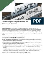 Understanding Voluntary Liquidation in UAE _ Expert Company Liquidator in UAE