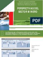 Perspectiva del Sector Minero - 2013