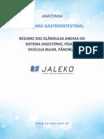 Anatomia Gastrointestinal Resumo Orgaos Anexos