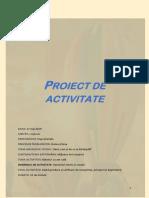 Proiect de Activitate. Balonul de Aer Cald
