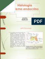 Histología – Sistema Endocrino