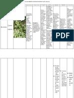 Reconocimiento de plantas.pdf