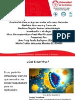 VIROLOGIA-MICROBIOLOGIA.pptx