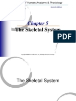 Chapter 5 The Skeletal System.ppt