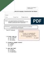 Lenguaje Diagnostico Rina Norte.docx