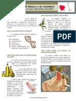 colesterol y cigarro.pdf