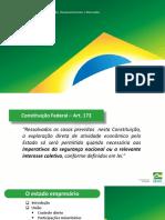O estado empresário - SEDDM (1).pdf
