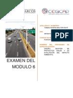 Examen Del Módulo 6