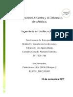 BFDE_U3_EA_ARCC