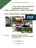 DESARROLLO_DE_FINCA_PARA_PROYECTO_DE_GAN.pdf