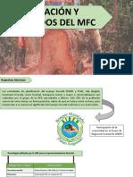 Aplicación de ingeniería forestal