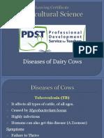 Diseases of Dairy Cows