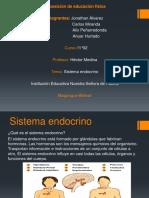 Exposicion de educacion fisica sistema endocrino.pptx
