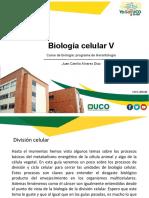 Genetica II Mitosis. gerontología.pdf