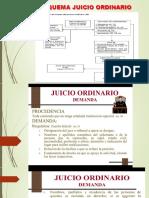 Juicio Ordinario (1)