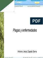 plagas_y_enfermedades.pdf