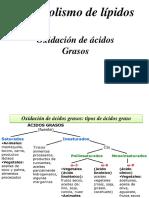 Metabolismo de Lípidos.pdf