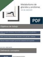 TALLER Metabolismo de Glucidos y Proteinas