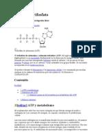 Adenosín trifosfato