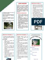Aluvion.docx
