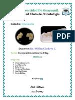 Notas de incrustaciones dentales