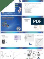 Aula_01_Visualizacao_e_Estrutura_proteinas