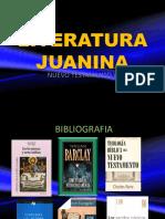 Escritos joanicos