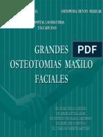 01 Grandes Osteomias
