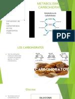 Metabolismo de Carbohidratos Glucolisis