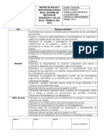 DOCUMENTO_2_MATRIZ_DE_ROLES_Y_RESPONSABILIDADES.docx