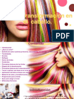 color y transformacion original telama.pptx